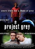 Project Grey 海报