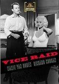 Vice Raid 海报