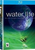 BBC:生命之水