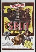 Split 海报