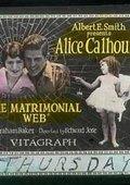 Matrimonial Web 海报