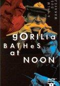 Gorilla Bathes at Noon 海报