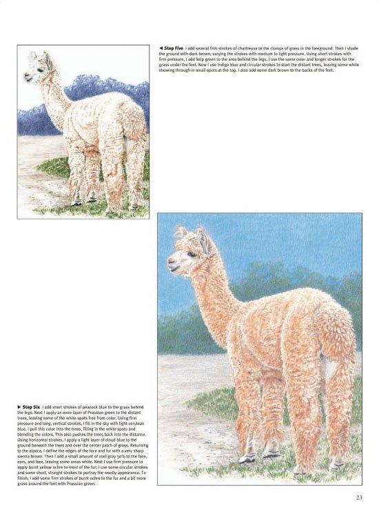 《彩色铅笔画(动物篇)》