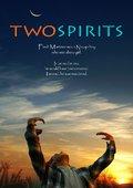 Two Spirits 海报