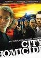 城市凶杀组 第五季