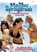 Malibu Spring Break 海报