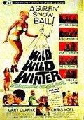 Wild Wild Winter 海报