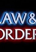 法律与秩序 第八季 海报