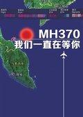 马航MH370班机失联实时进展 海报