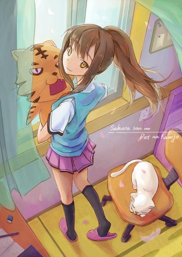 动漫 更新/《樱花庄的宠物女孩》(sakura sou no pet na kanojo)[...