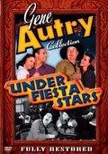 Under Fiesta Stars 海报