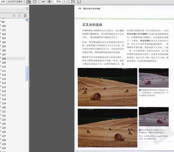 数码摄影构图圣经 彩图版图片