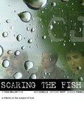Scaring the Fish 海报