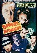 Bowery at Midnight 海报