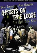 Ghosts on the Loose 海报
