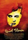 The Quiet Storm 海报