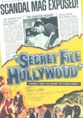 Secret File: Hollywood 海报