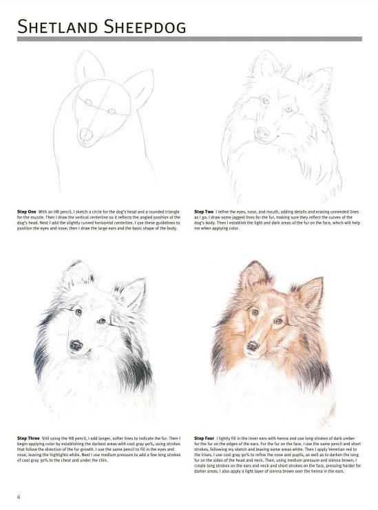 素描动物图片简单一点