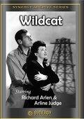 Wildcat 海报