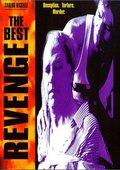 The Best Revenge 海报