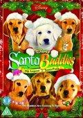 圣诞狗狗 海报