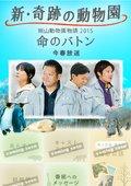 新・奇迹の动物园 海报