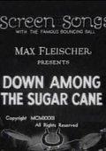 Down Among the Sugar Cane 海报