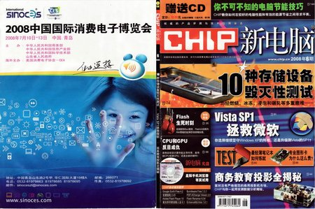 chip2008-06.jpg