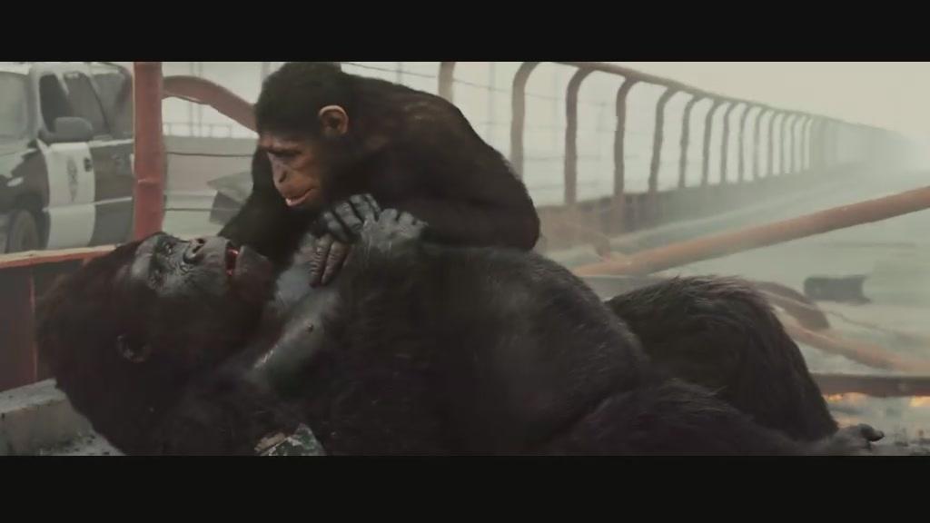 猩球崛起1国语版电影