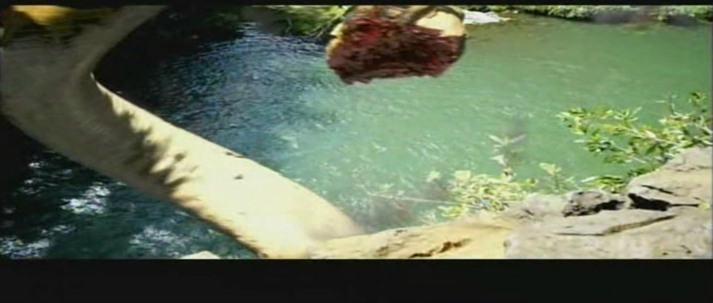 蛇的贴画怎么做-蛇鱼怪(piranhaco   蛇鱼怪兽_电影_芒果tv   蛇鱼怪(piranhaco   影片