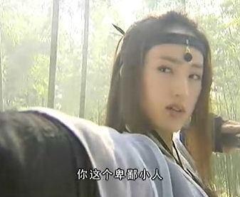 孝庄秘史全集_电视剧雪花女神龙_雪花女神龙 全集在线观看_面包站剧情分集