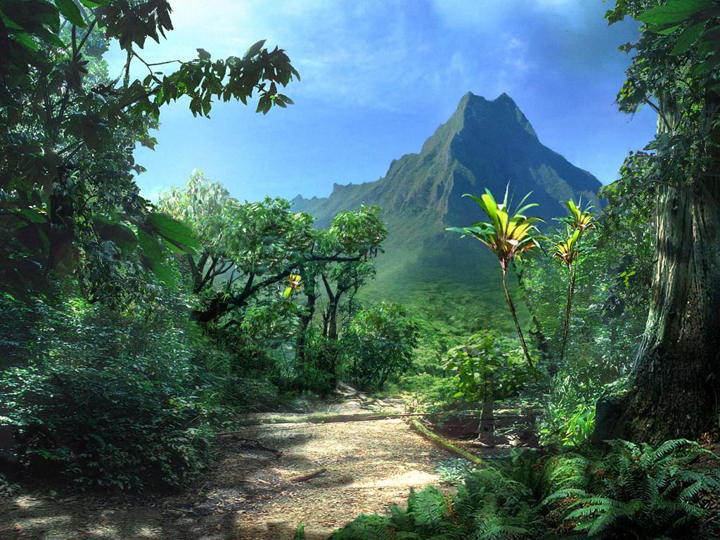 孤岛危机(crysis) - 游戏图片 | 图片下载 | 游戏壁纸