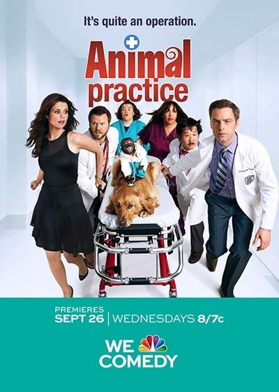 动物诊所(animal practice)