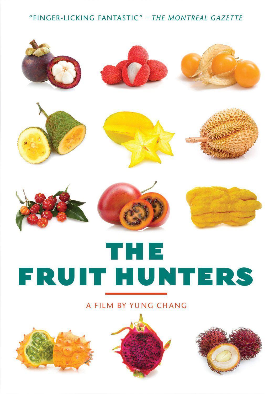 素描教程步骤图解水果