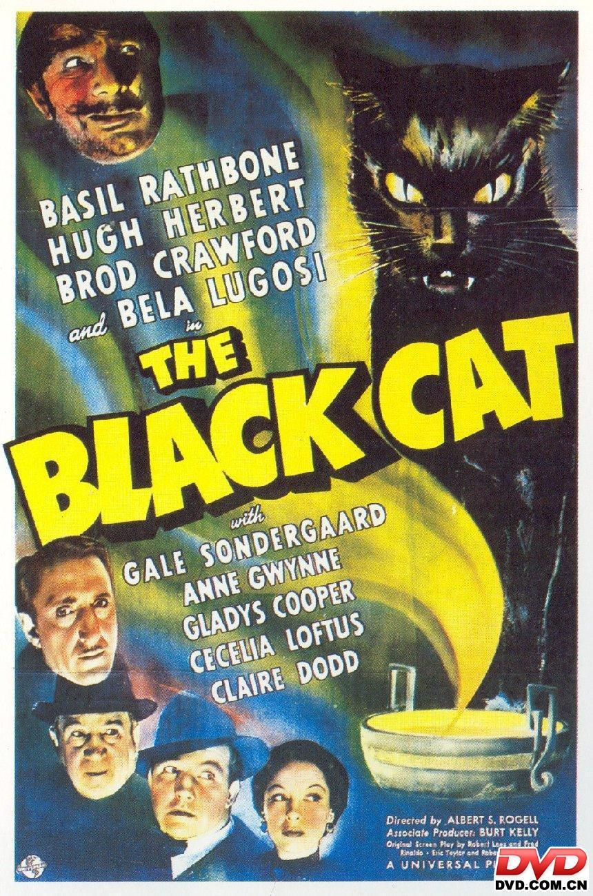 Black Cat The Movie