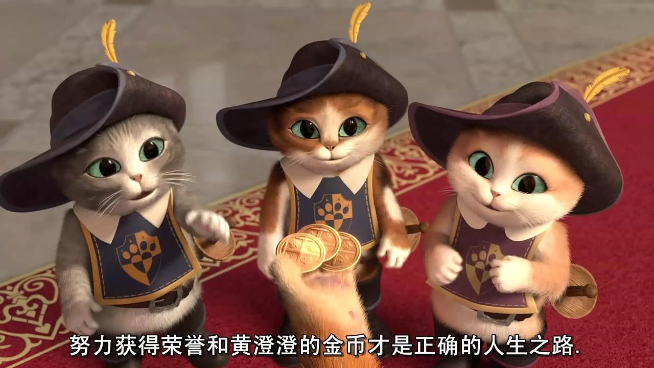 萌猫三剑客高清图片
